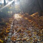 jesień w Srebrnej Górze